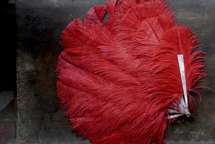 Red Antique Ostrich Feather Fan